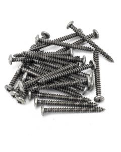 "Pewter 10x2"" Round Head Screws (25)"